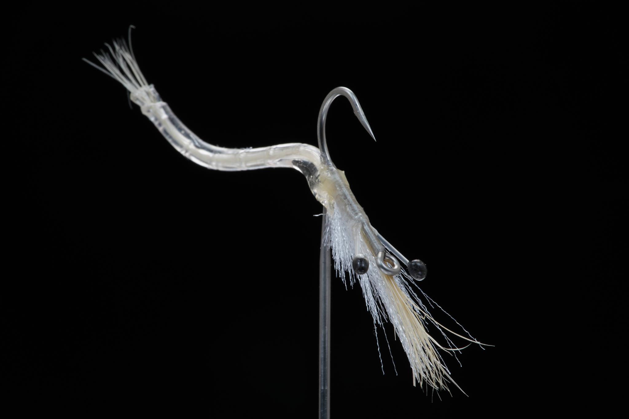Grass-Shrimp-SW.jpg